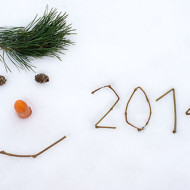 New-Year-2014-Images_elements_blog